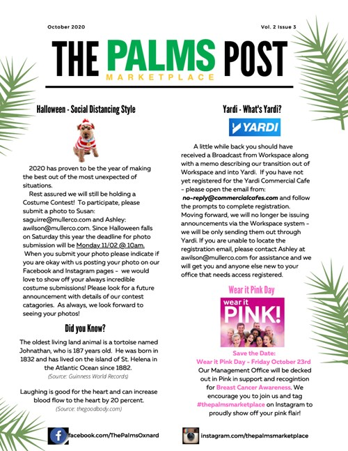 The Palms Post October 2020 Thumbnail